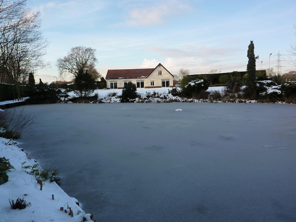 Disaster! On arrival we found the pond to be frozen over completely with no chance of breaking the ice
