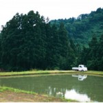Mud Pond Japan 3
