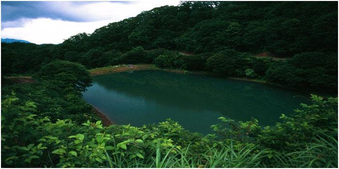 Mud Pond Japan 4