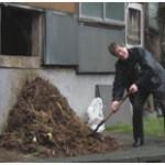 Waddy shoveling