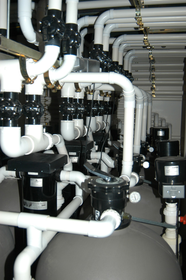 25% of the total filtration system