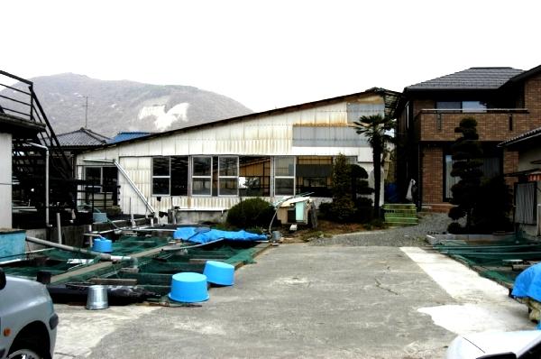 Isawa Nishikigoi Center 1