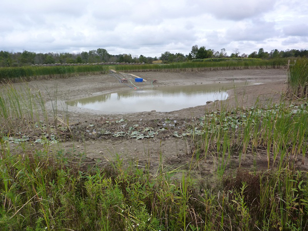 Mud pond was drained