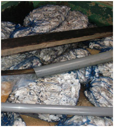Whole oyster shell media in sacks, commonly seen in the filtration chambers.