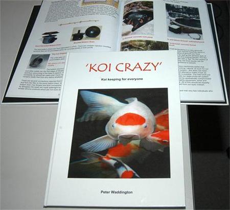 Koi Crazy By Peter Waddington