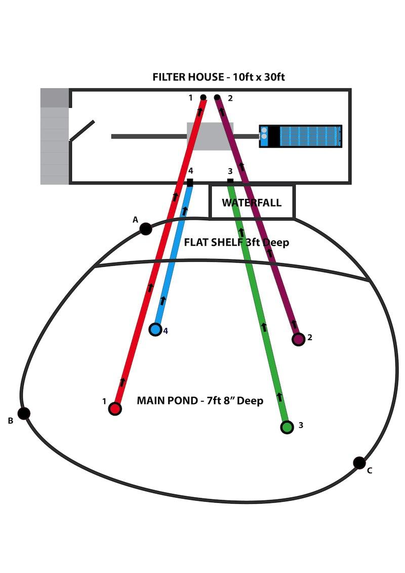 Peter Waddington Pond Diagram-v5