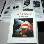 Koi Crazy By Peter Waddington