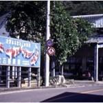 Bar in Japan talking about koi