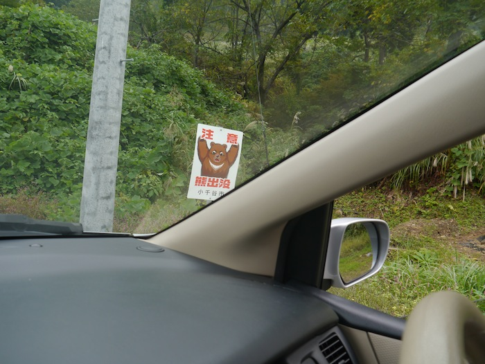 Sign showing bear warnings in the mountains