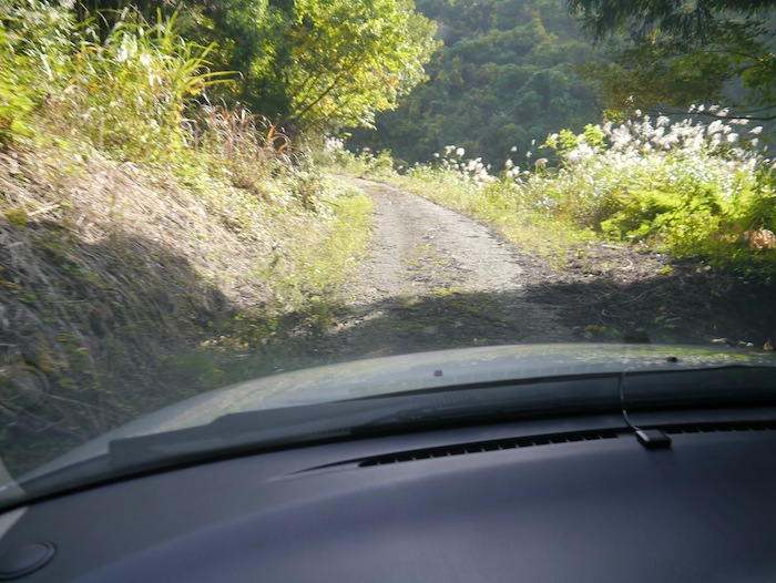 Narrow Road in the mountains