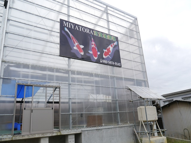 Miyatora, superb new facility at Budokubo